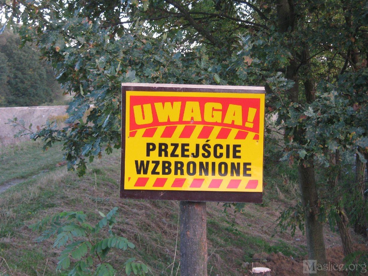 Most_na_Odrze_Budowa06